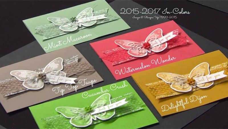 New incolor - butterflies