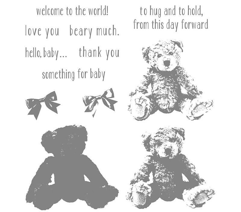Baby bear $26
