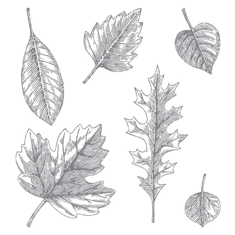 Vintage Leaves $26