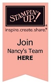 Join Nancy's Team Banner-001